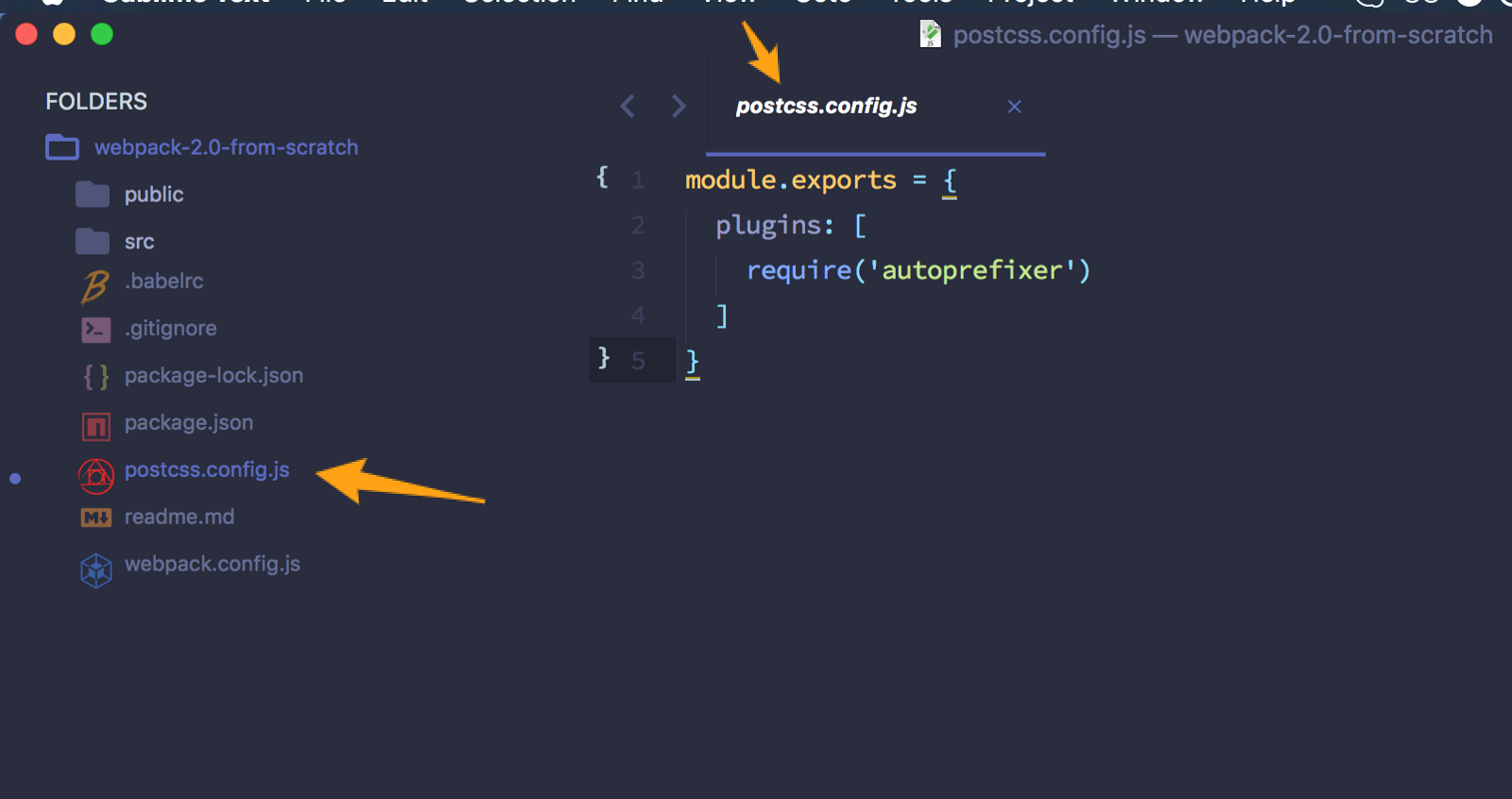 Laravel how to add script from our package.json