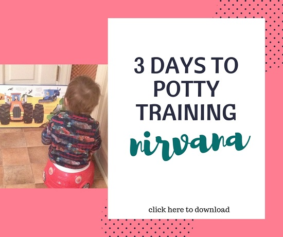 3 day potty training guide pdf